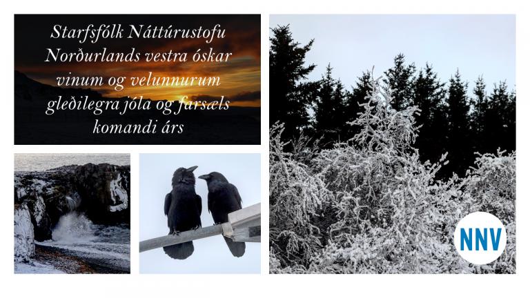 Jólakveðja frá Náttúrustofu Norðurlands vestra
